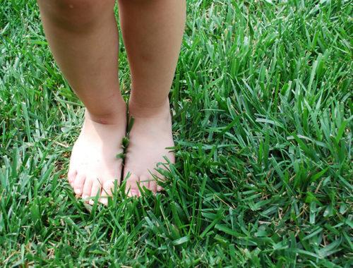 Pés descalços tocando a grama.