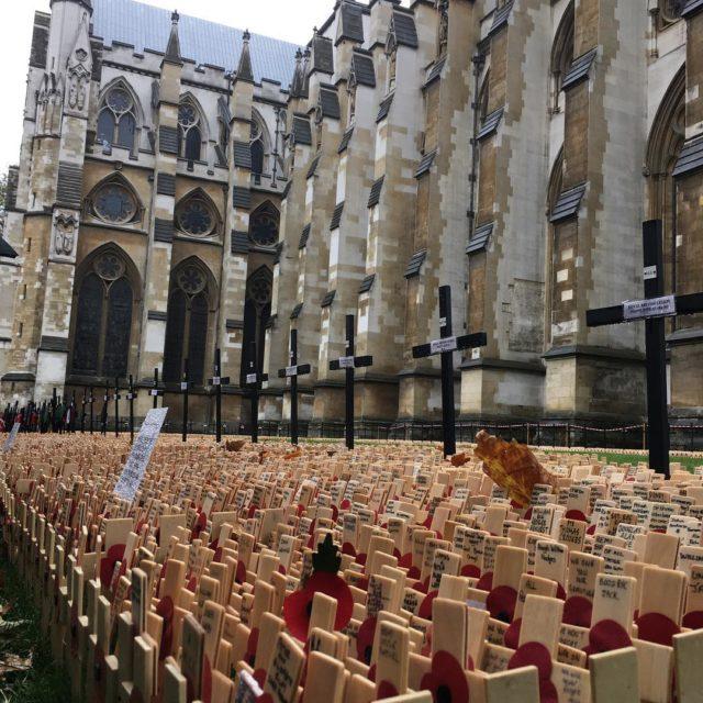 Remembrance Day! Cada pequena cruz um nome de quem perdeuhellip